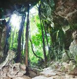 From the cave. View from the Bat cave Stock Photography