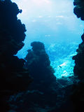 From the cave. Sunlight from the underwater cave. The Red Sea Stock Photography