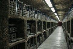 Cave avec beaucoup de bouteilles poussiéreuses d'alcool, d'entrepôt souterrain pour la fermentation et de stockage de vin photo stock