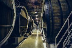 Cave avec des rangées de vieux barils de vin en bois, perspective photos libres de droits