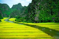 Cave barcos de turista em Tam Coc, Ninh Binh, Vietname Fotos de Stock