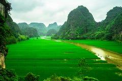 Cave barcos de turista em Tam Coc, Ninh Binh, Vietname Fotografia de Stock