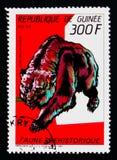 Cave bear Ursus spelaeus, Prehistoric animals serie, circa 1987 stock photo