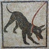 Cave canem mosaico, Pompeya Imagen de archivo libre de regalías