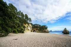 The cave of the cathedral cove beach,coromandel,new zealand 3. Sand, water, trees and the cave of the cathedral cove beach,coromandel,new zealand Stock Photos