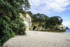 The cave of the cathedral cove beach,coromandel,new zealand 4. Sand, water, trees and the cave of the cathedral cove beach,coromandel,new zealand Stock Photos