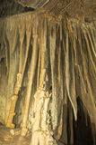 Cave Column from Lehman Cave Stock Image