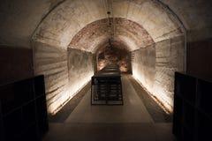 Cave d'échantillon de vin photo stock