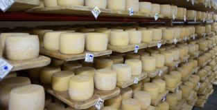 Cave de fromage suisse Images stock
