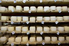 Cave de fromage suisse Image stock