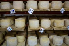 Cave de fromage suisse photographie stock