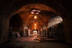 Cave de stockage de boisson photo libre de droits