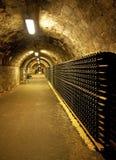 Cave de vigne photographie stock