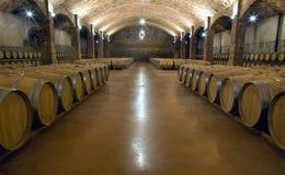 Cave de vigne Photos libres de droits