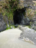 Cave at Heceta Head Lighthouse State Scenic Viewpo Royalty Free Stock Images
