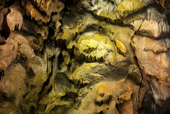 Cave. Limestone wall in a cave covered with dripstone Stock Images