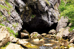 Cave with river spring Stock Images
