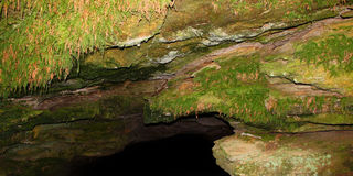 Cave Spring Natchez Trace Parkway Royalty Free Stock Photos