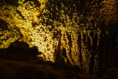 Cave with stalagmites and stalactites below the surface. Cave with stalagmites and stalactites landscape below the surface old royalty free stock photos