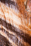 Cave structure Stock Photos