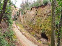 A cave tomb in the wall of a Via Cava, an ancient Etruscan road carved through tufo cliffs in Tuscany. An Etruscan tomb carved into the wall of an ancient via stock photos