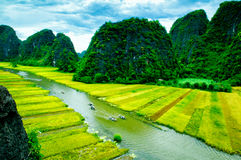 Cave tourist boats in Tam Coc, Ninh Binh, Vietnam Stock Photo