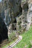 Cave Under Predjama Grad, Slovenia Royalty Free Stock Image