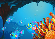 A cave under the sea with a school of fish Stock Photos