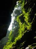 Cave, Vanuatu Stock Photo