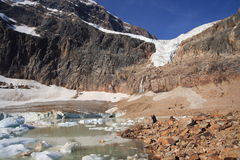 cavell βράχοι λιμνών πάγου Στοκ εικόνα με δικαίωμα ελεύθερης χρήσης