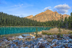 Cavell Edith Lake. Canadian Rockis, Alberta, Canada stock images