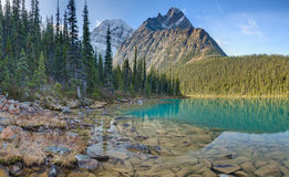 Cavell Lake in Jasper National Park, Canada Royalty Free Stock Image