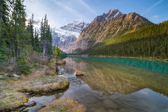 Cavell Lake in Jasper National Park, Canada Stock Image