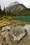 Cavell Lake Mount Edith Cavell Stock Photography