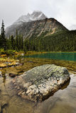 Cavell Lake Mount Edith Cavell Royalty Free Stock Photo