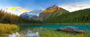 Cavell lake Royalty Free Stock Photography