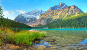 Cavell lake royalty free stock photo
