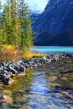 Cavell sjö Jasper National Park Royaltyfria Foton