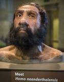 caveman Immagini Stock Libere da Diritti
