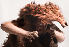 Caveman in bear skin. Isolated on white royalty free stock images