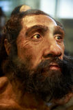Caveman. Mask of the face of a caveman called Neanderthalensis stock images
