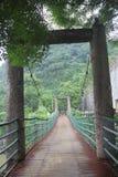 The Cavenagh Bridge Royalty Free Stock Image