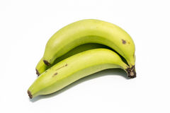 Cavendish banana Royalty Free Stock Photography