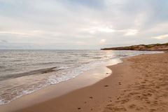 Cavendish beach in the morning Stock Images