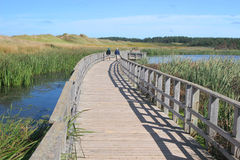 Cavendish National Park, Prince Edward Island royalty free stock images