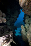 Cavern. Taken in the red sea royalty free stock photos