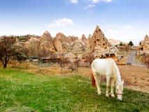 A caverna antiga local dirige com o cavalo doméstico no primeiro plano fotografia de stock royalty free