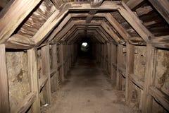 Caverna apoiada de madeira ao oceano Fotos de Stock