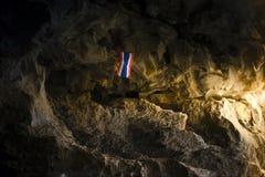 Caverna, boca do tigre fotos de stock royalty free