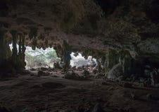 Caverna caraibica di buio dell'isola del Bonaire Fotografia Stock